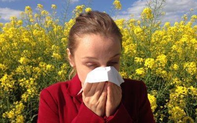 Jin Shin Jyutsu – Strömtipp Pollenallergien